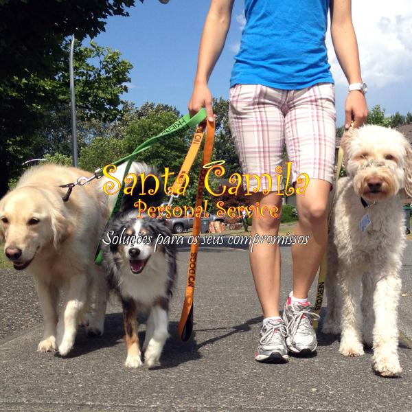 Dog walker - passeadora de cachorros