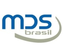 Mds brasil soluções em internet e consultoria empresarial