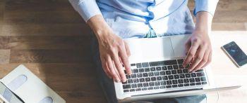 Palmaweb - desenvolvimento de sites. Guia de empresas e serviços